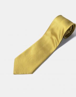 Retro gold colour tie for men